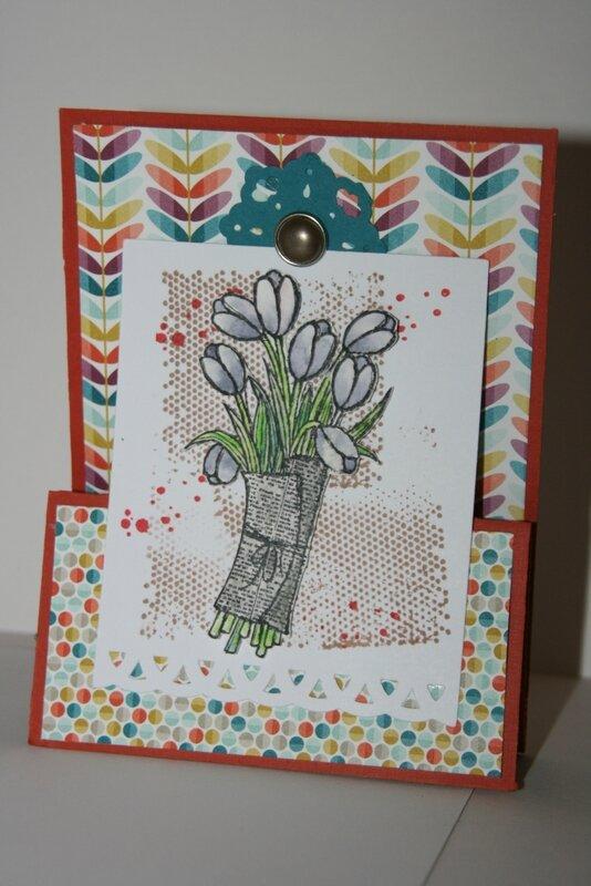 tulipes +