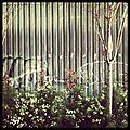 L'instant clic & clic & ... - instagram #7