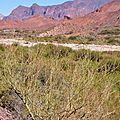 Quebrada de Cafayate8