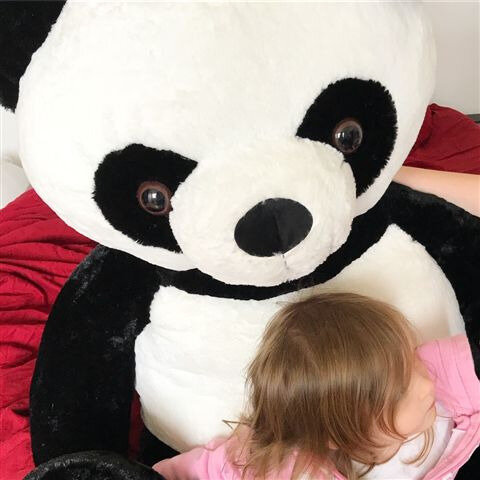 Panda géant ©Kid Friendly