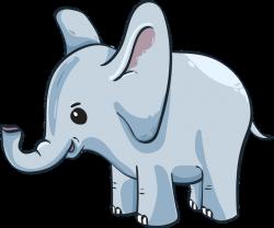 baby-elephant-3526681_960_720