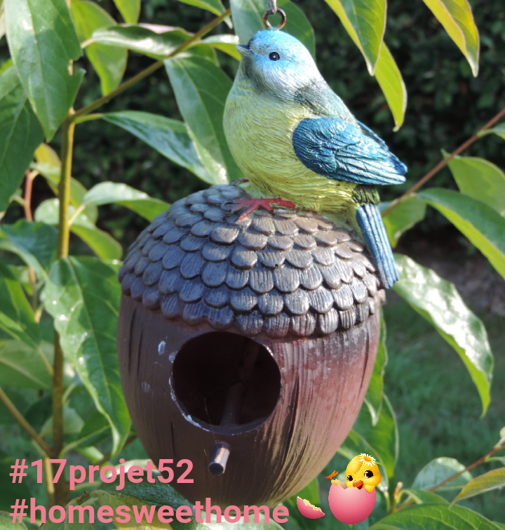 38 projet52 2017 - Home sweet home