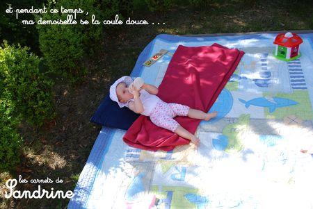 L_onie_carnets_de_Sandrine