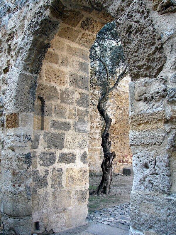 Lisbonne château Saint-Georges 13