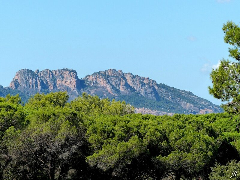 P1450512 Rocher de Roquebrunes sur Argens