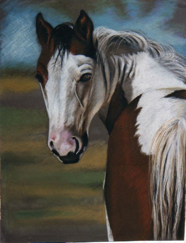 Cheval Pie Pastel à l'huile Ghislaine Letourneur - Animal de ferme -Collection personnelle