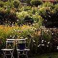 Windows-Live-Writer/jardin_D005/DSCF3891